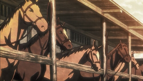 馬いっぱいいる