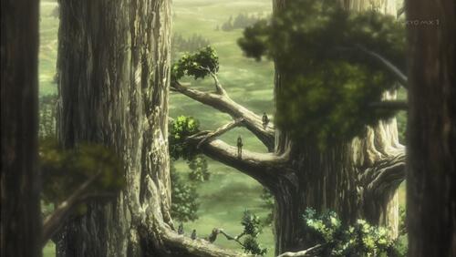巨大樹の森