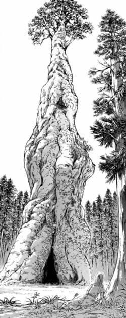 巨大樹の原型
